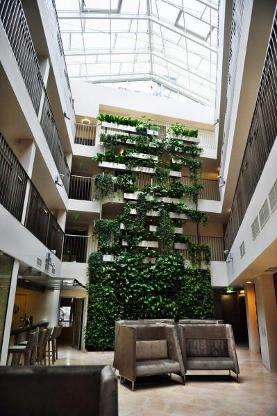 Фото отеля Amberton Green Apartments № 34