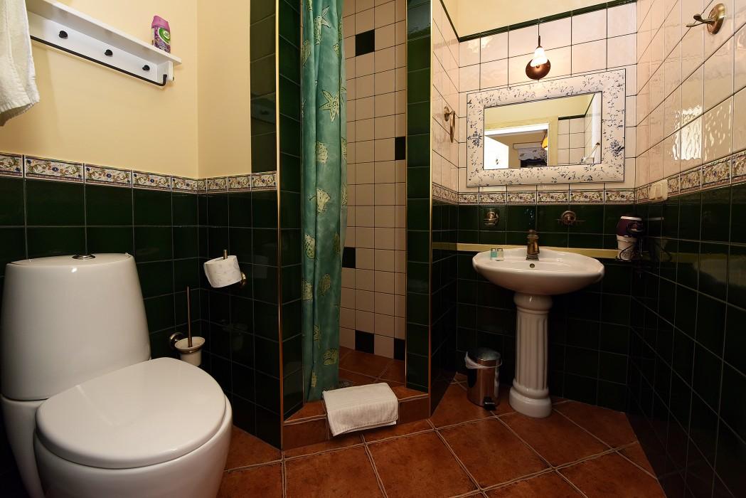 Фото отеля Vila Artemide № 36